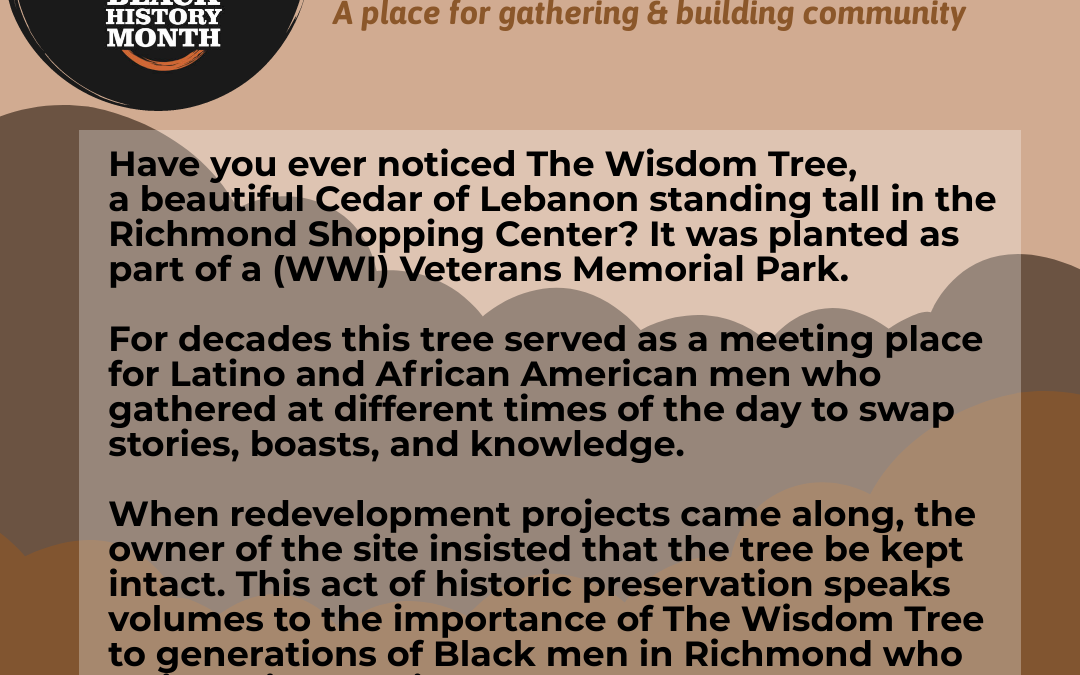The Wisdom Tree: A Place for Gathering & Building Community